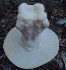 Latex rubber lion cement concrete plaster mold mould