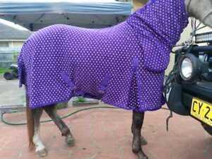 Polar Fleece Combo Horse Rug 300gsm warm Fleece Dotted Pattern