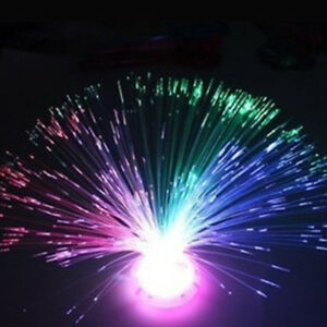 Colorful Led Fiber Optic Light Lamp