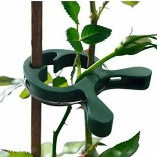 40pcs Reusable Garden Plastic Plant Clips Tree Flower Support Ties Tomato Tools