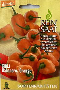 Habanero Orange - Saatgut - Samen  - Demeter - aus biologischem Anbau Rarität