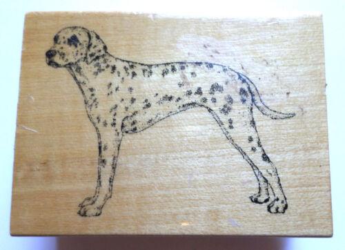 Stamp Gallery Dalmation Puppy Dog Wooden Rubber Stamp