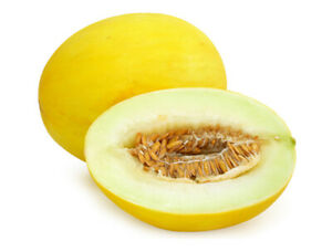 Melone Obst
