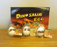 3 Growing Pet Dinosaur Eggs Grow Dino Hatching Hatch Egg