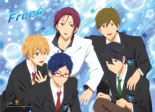 Free! Iwatobi Swim Club Group Blue BG Wall Scroll Poster NEW