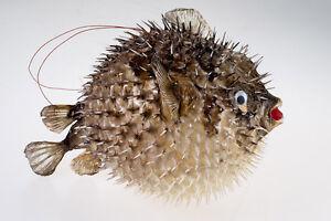 Image Is Loading Globe Fish Handmade Swell Fish Hanging Puffer Fish
