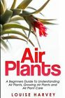 Air Plants: A Beginners Guide to Understanding Air Plants, Growing Air Plants and Air Plant Care (Booklet) by Louise Harvey (Paperback / softback, 2015)