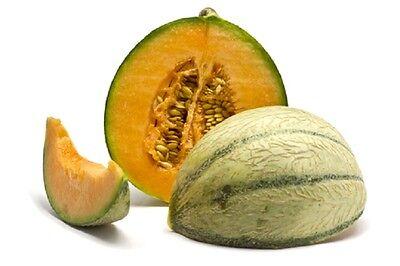 Melon Canta Charentais - 120 seeds - Greenhouse crop - Vegetables / fruits