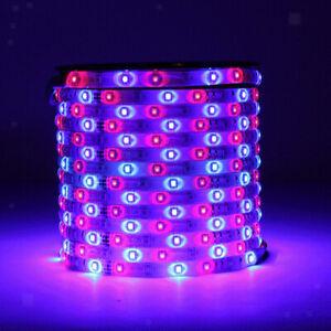 Strisce-LED-Con-Telecomando-A-44-Tasti-Decorazioni-Per-Interni-Per-Interni-Spina