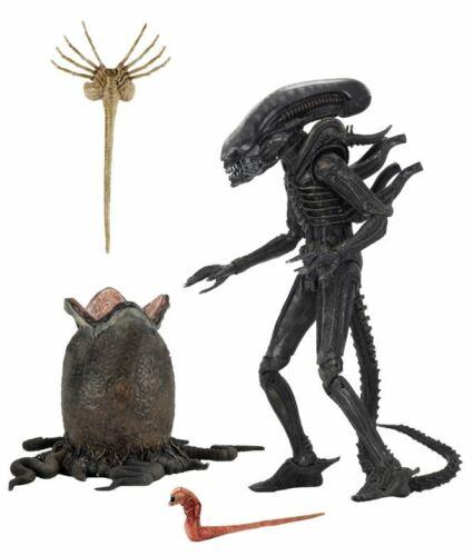"""NECA Alien 40TH Anniversaire 7/"""" Ultimate Big Chap Alien Pré Commande"""