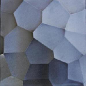 Set 2 Branc Plastic Molds for 3 D Panels Plaster wall stone Form 3D decor panels