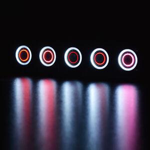 LED-Box-fuer-5-x-5-Euro-Muenze-Planet-Erde-Subtropische-Zone-Klimazonen-der-Erde