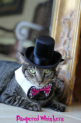 The Aristocrat top hat for cats and dogs (hat only)