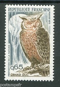 FRANCE-1971-timbre-1694-oiseaux-Grand-Duc-neuf