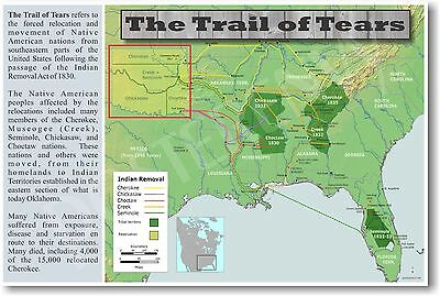 NEW Social Studies Classroom POSTER - The Trail of Tears - Native Americans