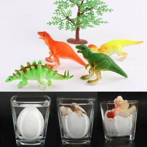 Collectibles Dinosaur Egg Hatching Dinosaur Baby Miniature Toy 6x2.5x5cm