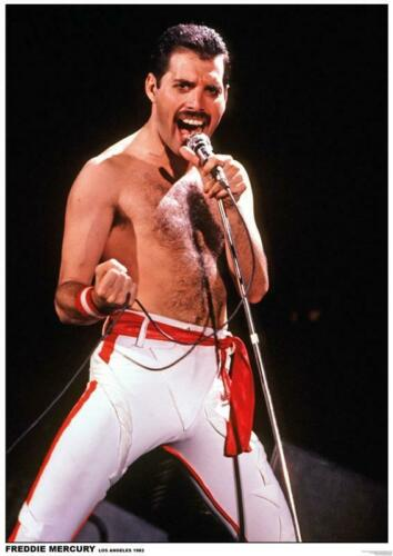 24 in x 33 in Freddie Mercury of QUEEN Music Poster Los Angeles 1982