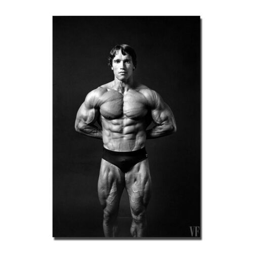 Arnold Schwarzenegger Bodybuilding Silk Poster Wall Art Canvas Print 12x18 24x36