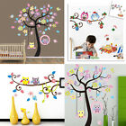 Colorful Owl Birds Branch Removable Vinyl Home Decor Mural Wall Stickers Decal