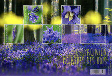 Belgium 2017 MNH Forest in Bloom Bluebells 5v M/S Plants Flowers Trees Stamps