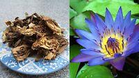 (39,75€/100g) 20 Gramm Räucherwerk Nymphaea caerulea / Blauer Lotus