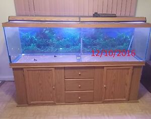 125 gallon aquarium fish tank with oak stand northern for 125 gallon fish tank stand