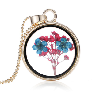 hot-new-round-pendant-colorful-specimen-dried-flower-necklace-QW212