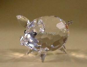 d00ea83c0 SWAROVSKI CRYSTAL PIG MEDIUM (WIRE TAIL) 010031 MINT BOXED RETIRED ...