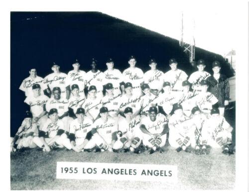 1955 LOS ANGELES ANGELS 8X10  PHOTO  BASEBALL CALIFORNIA USA