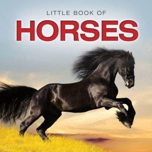 "1 of 1 - ""VERY GOOD"" Little Book of Horses (Little Books), Jon Stroud, Book"
