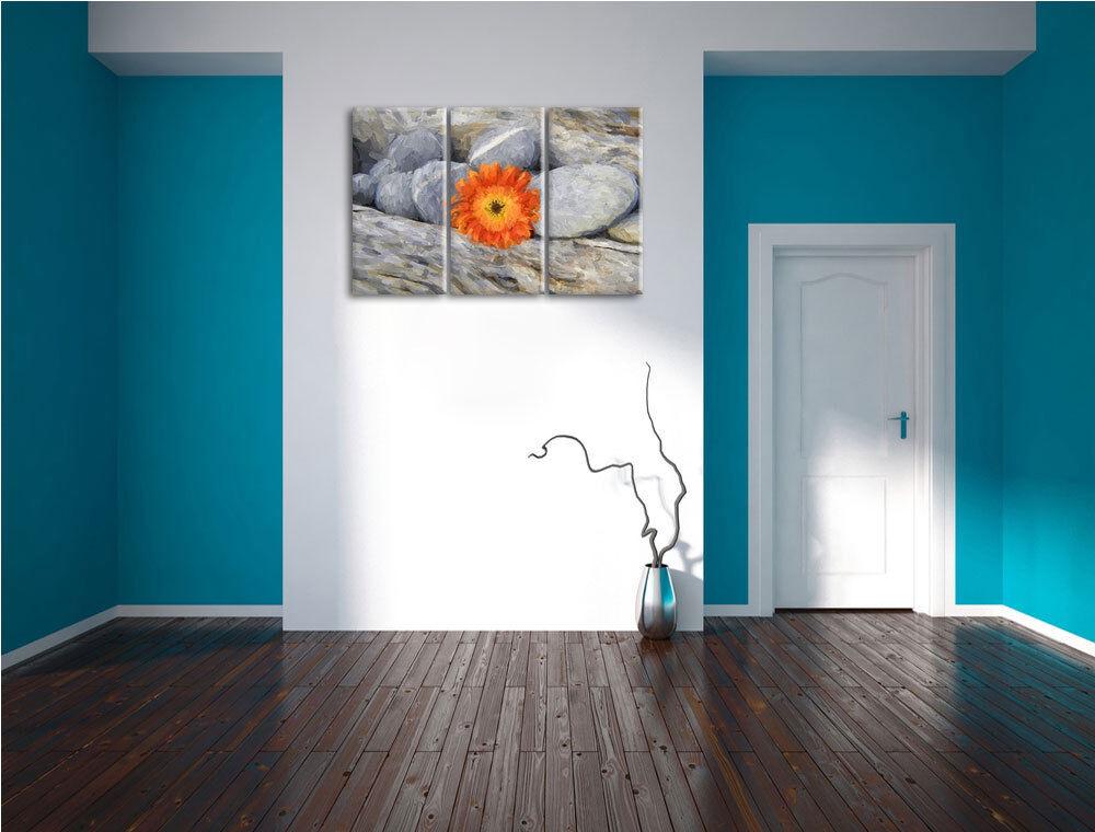 Gerbera con Piedras 3-Teiler Foto Decoración en Lienzo Decoración Foto de Pa rojo  Impresión a08344