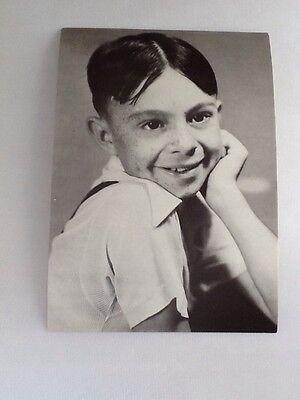Vintage ALFALFA Press & Publicity Movie/Film Postcards/Publicity Photos