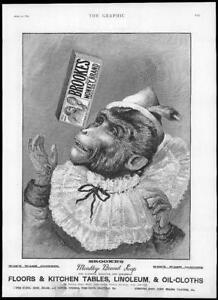 1895-Antique-Print-ADVERTISING-BROOKES-MONKEY-BRAND-SOAP-040