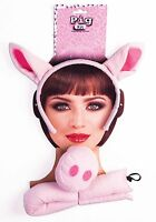 Kids Pig Kit Ears Tail & Nose Set 3 Little Pigs Story Book Barn Yard Animal