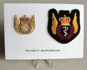 Air-Force-Flight-Surgeon-Officer-Full-Size-Metal-amp-Cloth-Badge-Set-Wings-Lot