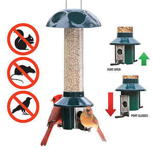 Squirrel Proof Bird Feeders PestOff Stops Squirrels Large Birds - Mixed Seed