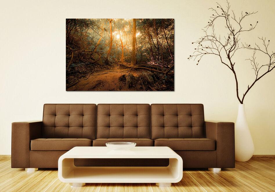 3D Die Sonne den Wald 57 Fototapeten Wandbild BildTapete AJSTORE DE Lemon