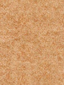 Wallpaper-Designer-Copper-amp-Tan-Old-Lace