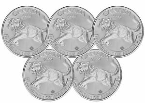 Lot of 5 - 2016 Canadian 1oz Silver Cougar $5 Coin .9999 Fine BU