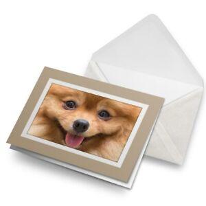 Greetings-Card-Biege-Cute-Pomeranian-Puppy-Dog-Animals-8660