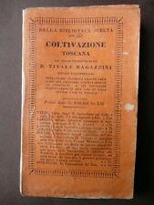 Agricoltura Coltivazione Toscana 1842 Vitale Magazzini Governo Casa uso toscano