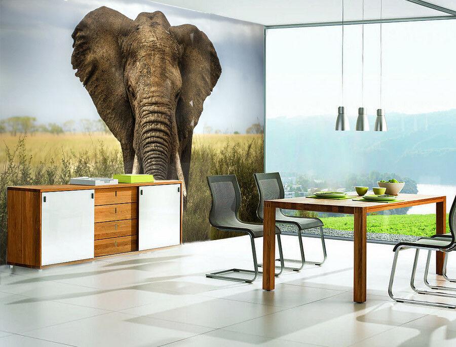 3D Sky Elefantenrasen 58 Tapete Tapeten Mauer Foto Familie Tapete Wandgemälde DE