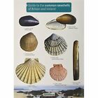 Guide to The Common Seashells of Britain and Ireland Field Studies Council 97819