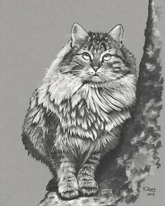Original-art-work-Ink-drawing-Cat-in-the-tree-on-toned-gray-paper-animal-8X10-039-039