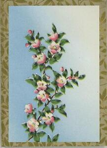 VINTAGE CLIMBING PINK WHITE ROSE VINE ART LITHO PRINT ON ANTIQUE PAPER ACEO SIZE