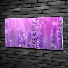 Glas-Bild Wandbilder Druck auf Glas 100x50 Deko Blumen /& Pflanzen Lavendel