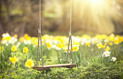 Large Framed Print - Tree Swing in a Wild Flower Meadow/Field (Picture Poster)