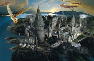 Detalles De Harry Potter Hogwarts Característica Pared Arte Mural Auto Adhesivo Vinilo Pintado Ver Título Original