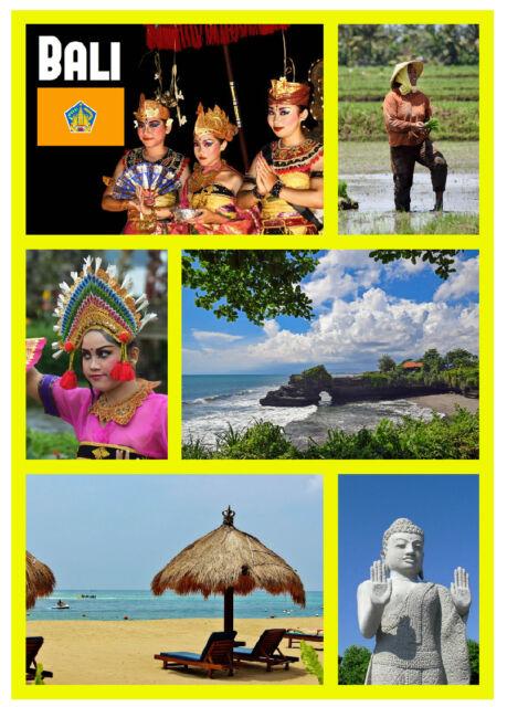 BALI, INDONESIA - SOUVENIR NOVELTY FRIDGE MAGNET - SIGHTS - GIFT / XMAS - NEW