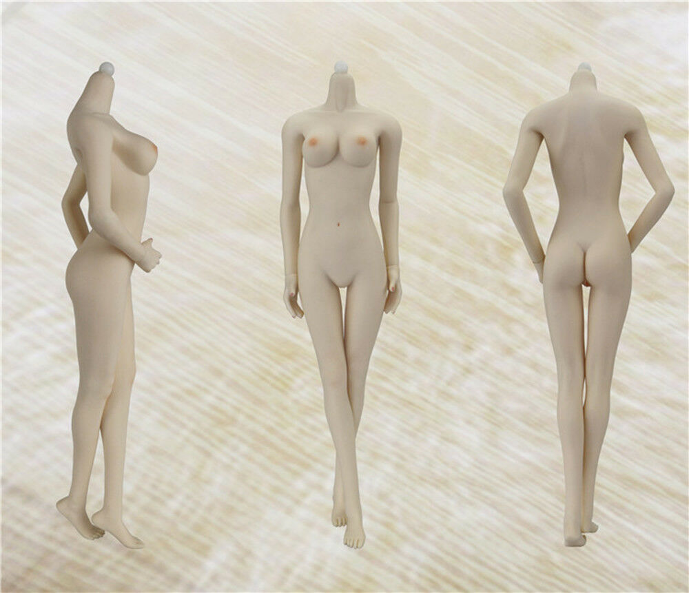 1 6 JIAOUDOL Female Flexible Steel Stainless Figure Body W 6 color Medium Bust
